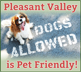 Pleasant Valley Resort is Pet Friendly